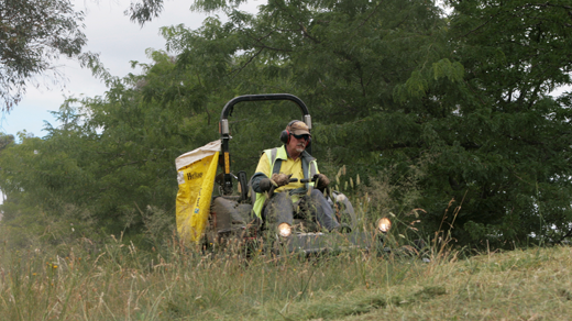 Ride-on mower being used on a public nature strip.