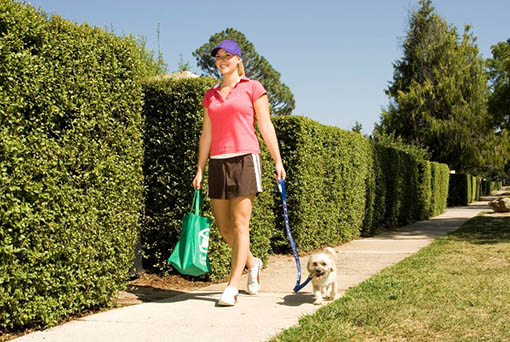 Girl walking a dog on leash on a footpath