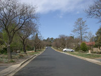 Canberra Street with trees