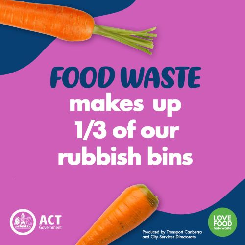 Food waste makes up 1/3 of our rubbish bins