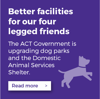 Read more about how the ACT Government is upgrading dog parks and the Domestic Animal Services Shelter