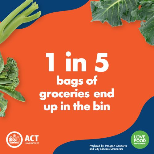 1 in 5 bags of groceries end up in the bin